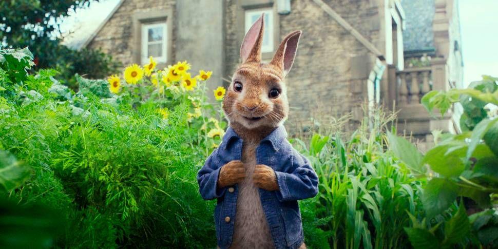 FILMAKTUELL: Petter kanin blir å se på norske lerreter fra og med 16. februar.