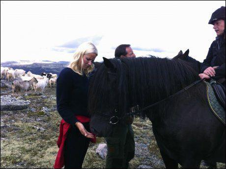GLAD I HESTER: Kronprinsesse Mette-Marit fikk ta en ridetur på fjellturen til Pika. Foto: Scanpix