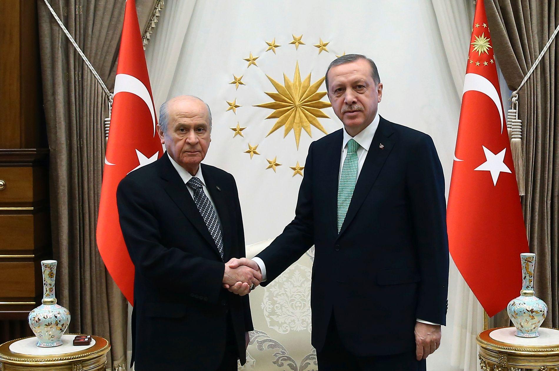 GIR HAM MAKTEN: President Recep Tayyip Erdogans AKP mangler 16 stemmer i parlamentet for å avholde en folkeavstemning. De får han trolig av nasjonalistleder Devlet Bahceli fra partiet MHP. Her møtes de i Ankara 3. november.