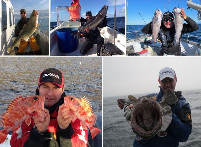 FLEST NORSKE ARTER:  Her er noen få av mer enn 100 bilder Jon Olav har tatt av sine norske fiskearter. Se stor bildespesial lenger ned i saken.