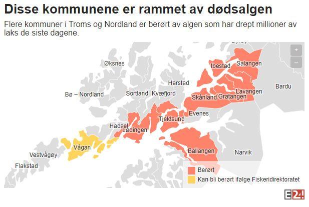 STORE OMRÅDER: Kart over hvilke kommuner som er berørt av algeinvasjonen per 22. mai 2019. De røde kommunene har anlegg eller selskaper som er berørt av dødsalgen, mens gule områder står i fare for å bli rammet.