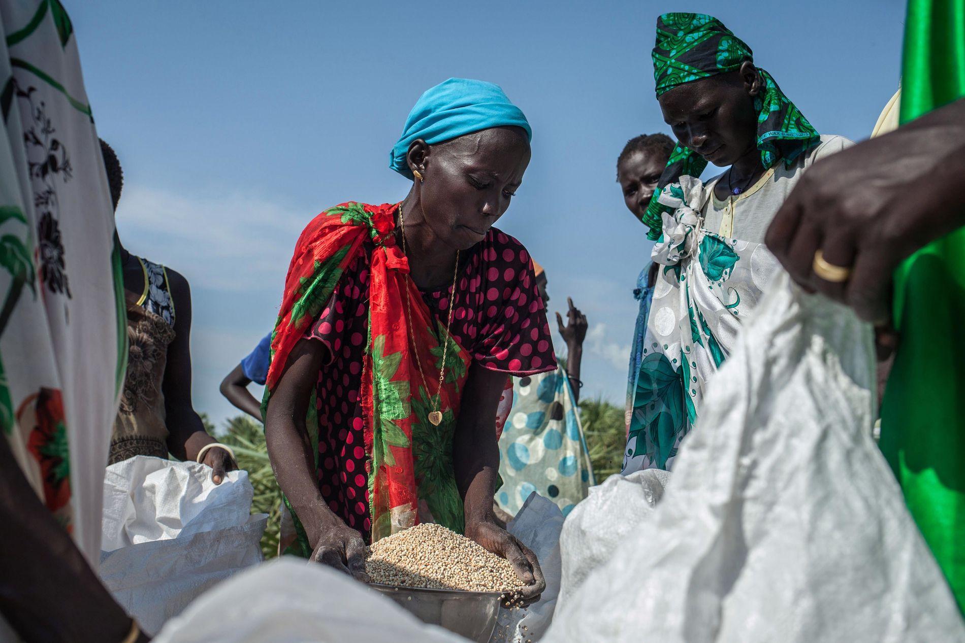 I dag er nærmere 100 millioner mennesker i verden avhengige av nødhjelp for å overleve, skriver organisasjonene.  Her henter en kvinne mat fra et flydropp med mat i regi av Røde Kors i Sudan. Bildet er fra 2014.