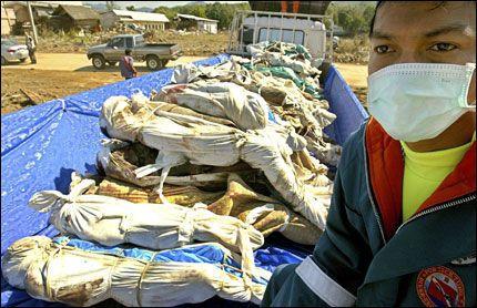 800: 800 lik ble oppdaget i Khao Lak tirsdag. En redningsarbeider har hjulpet til med å løfte likene opp på et lasteplan. Foto: EPA