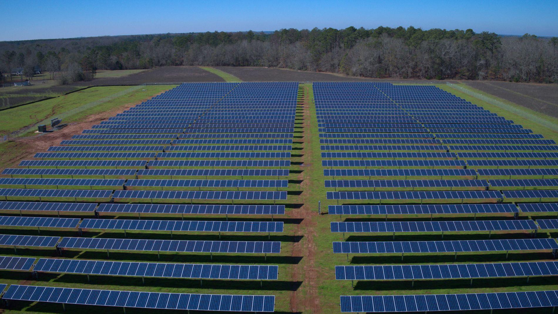STORT I USA: 260 000 amerikanere arbeider nå innen solkraft. Her er 40 000 kvadratmeter bondeland eiet av tidligere president Jimmy Carter dekket av solpaneler. Bildet er fra 8. februar 2017.