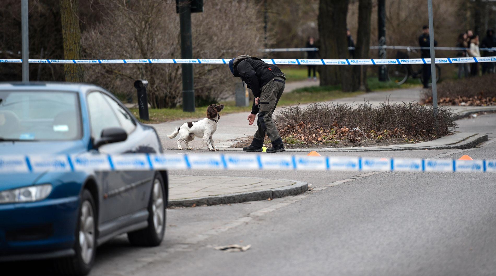SKUTT I MALMÖ: Politi med hund søker på Ystadvägen i Malmö, etter at en person ble skadet i en skyteepisode utenfor en restaurant i mars 2017.