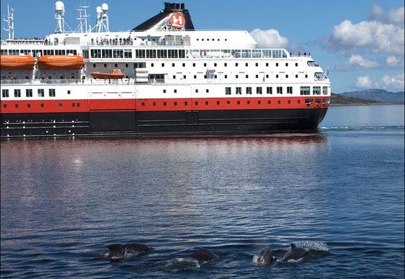 Hurtigruten omringet av enorm hvalflokk i Trondheim