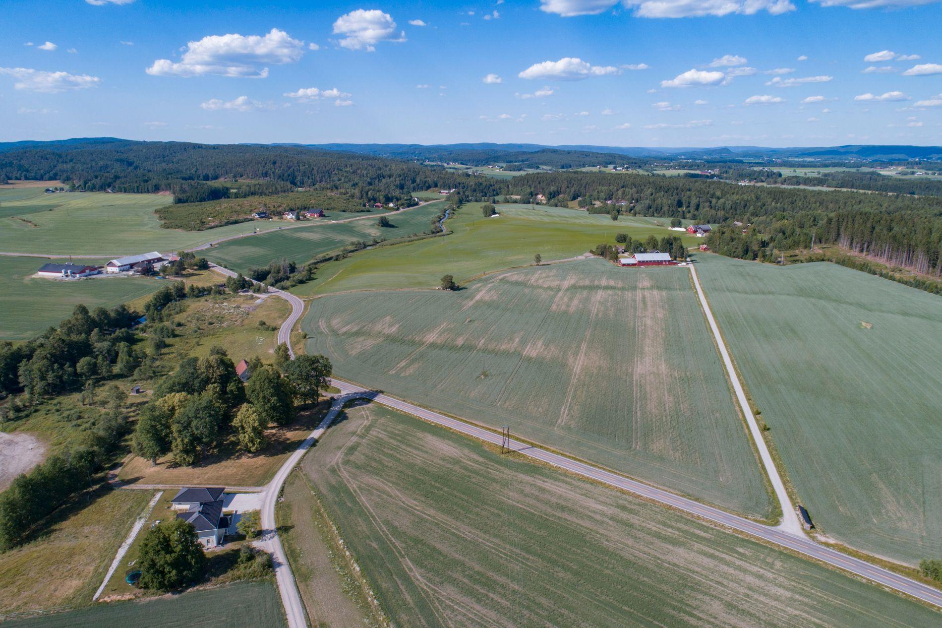 TØRT: Flere gårder sliter med dårlige beitemarker og tomme brønner som følge av vannmangelen, her fra en gård i Aurskog Høland.