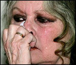 GRÅT: Brigitte Bardot (71) brast i gråt foran pressen etter å ha vist fram et videoopptak av selfangst. Foto: Reuters