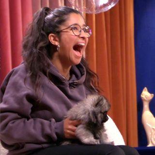 EKSTASE: Ekte glede da tre hundevalper ble brakt inn i studio som overraskelsesgjester.