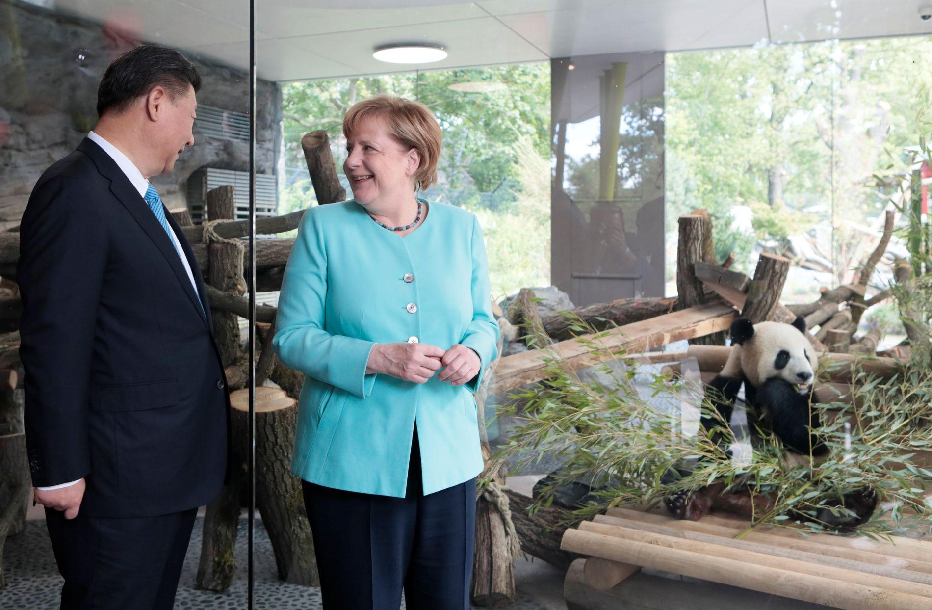 KINESER PÅ TYSK JORD: Jiao Qing («skatt») og hans makker Meng Meng ble i dag presentert for Berlins beboere, ledsaget av Angela Merkel og Kinas president Xi Jinping FOTO: AFP