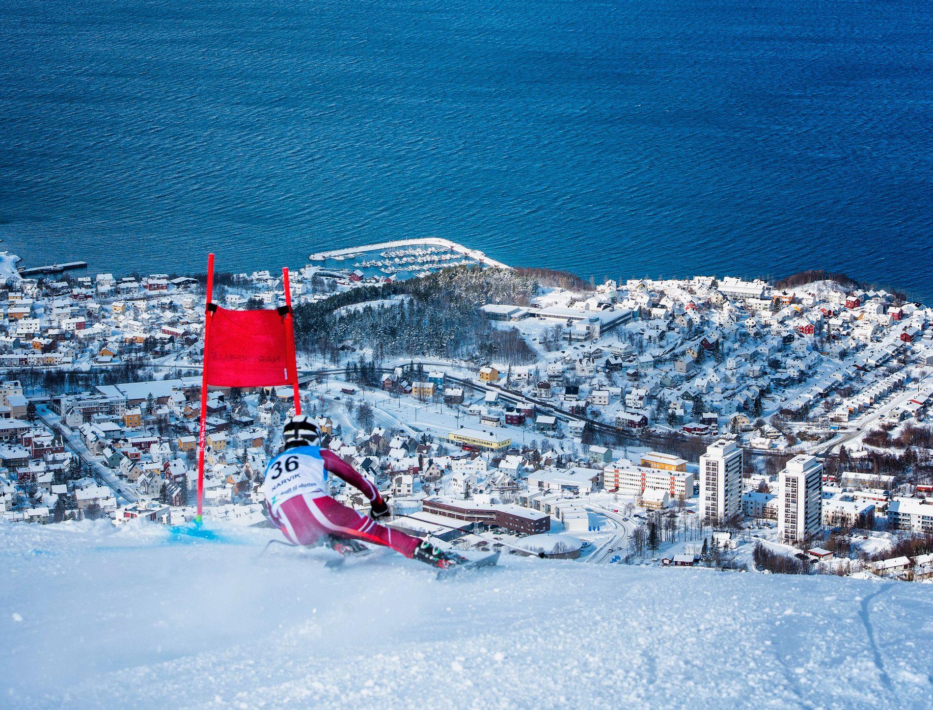 SPEKTAKULÆRT:  Alpinløypene i Narvik har havet som bakteppe. Her vil man arrangere VM i 2025. Men det vil også Kvitfjell/Hafjell, som har fått «nei» av FIS en rekke ganger.