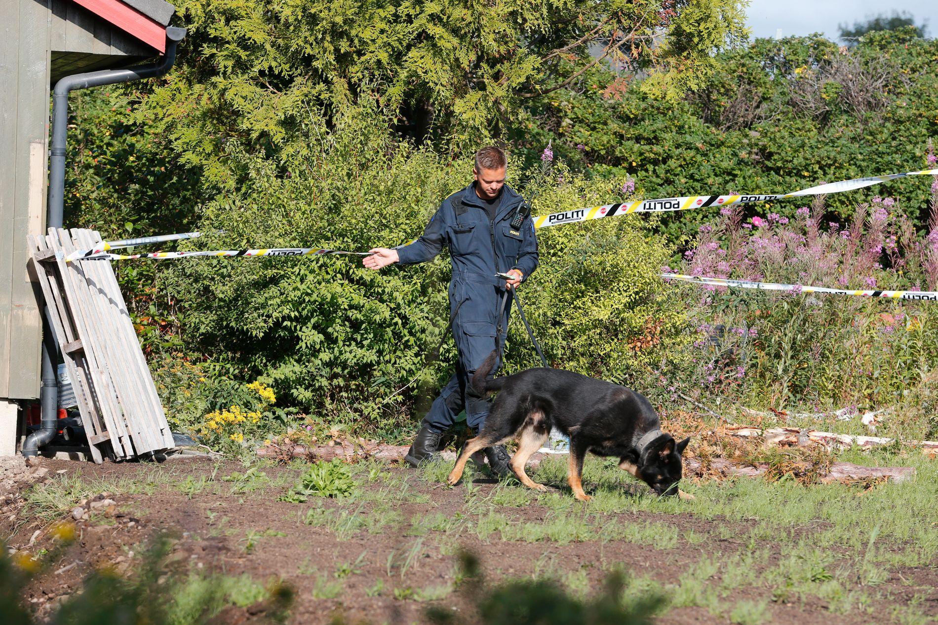 DREPT: 13 år gamle Sunniva Ødegård ble drept den 29 juni i fjor på Varhaug. Her søker politiet med hund dagen etter drapet.