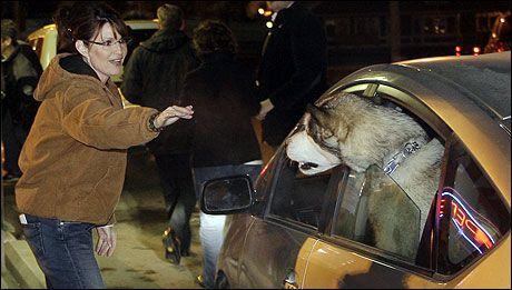 143bba34 HENGES UT: Visepresidentkandidat Sarah Palin får den største andelen av  republikaneres vrede etter at de led et soleklart nederlag for demokratenes  Barack ...