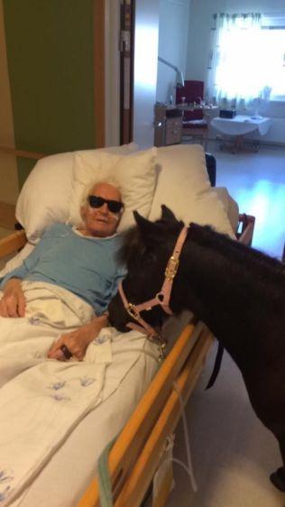 FANT TONEN: Karl Holmen likte godt å få besøk av Bolla – og det gjorde de andre beboerne på sykehuset også!