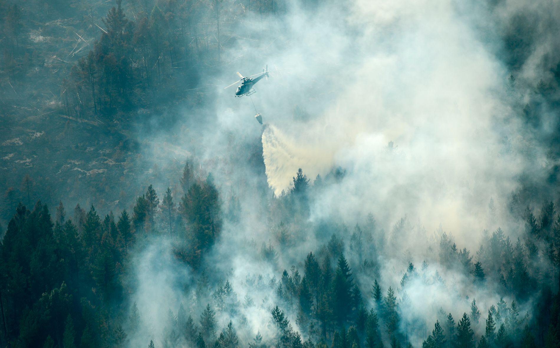 NOK KAPASITET: - Slukningsarbeidet har vist at de nordiske landene trenger å sikre at det finnes nok kapasitet til å slukke branner i hele Norden, skriver kronikkforfatterne. Bildet er fra slukningsarbeid i Ljusdal i Sverige.