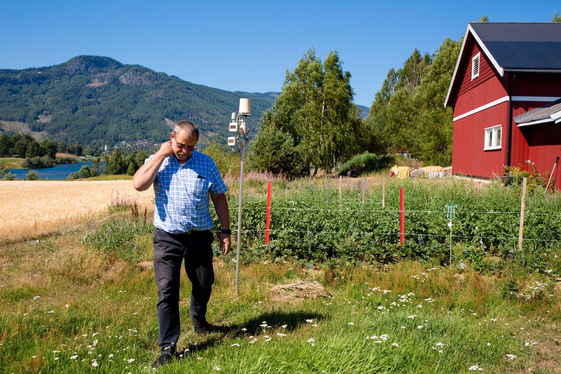 MÅLESTASJON: Fra hagen i Nesbyen har Nils Gudbrandsplass målt temperaturer opp mot 40 grader denne sommeren.