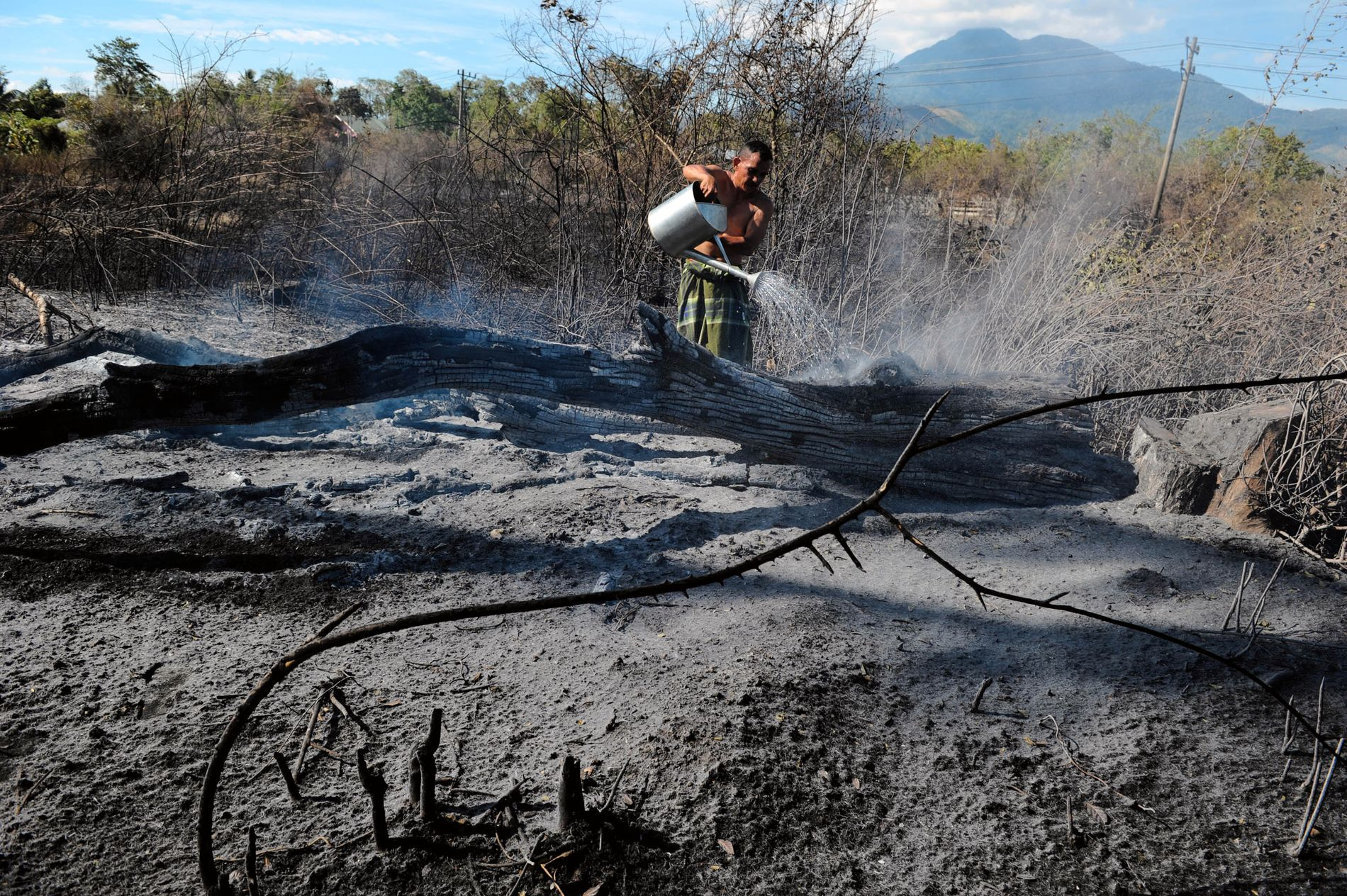 BRENNER NED SKOGEN: For å åpne for landbruk og palmeoljeplantasjer ødelegges myr og regnskog i Indonesia.