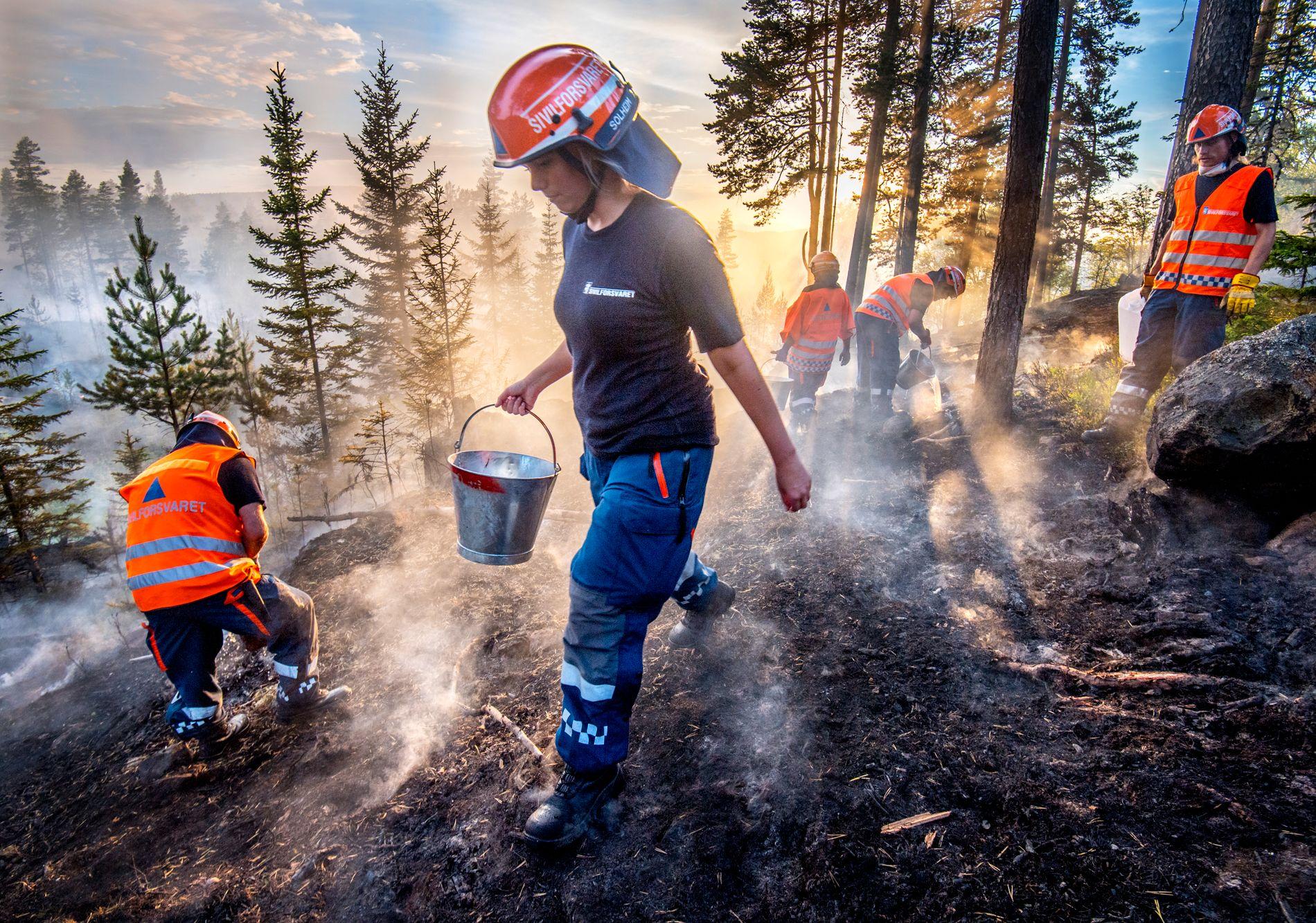 SKOGBRANN: Ved Elgsjø på Notodden jobber sivilforsvaret iherdig med å slukke skogbrann i juli.