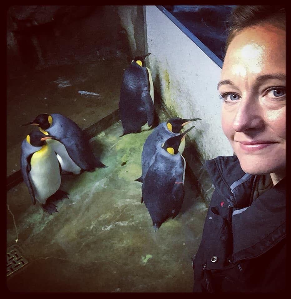 EKSKJÆRESTER: Her er dyrepasseren Sandie Hedegård Munch for et år siden med pingvinene Singer og Hollænderen, da de fortsatt var et par.
