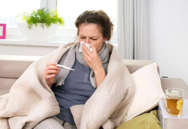feber voksne