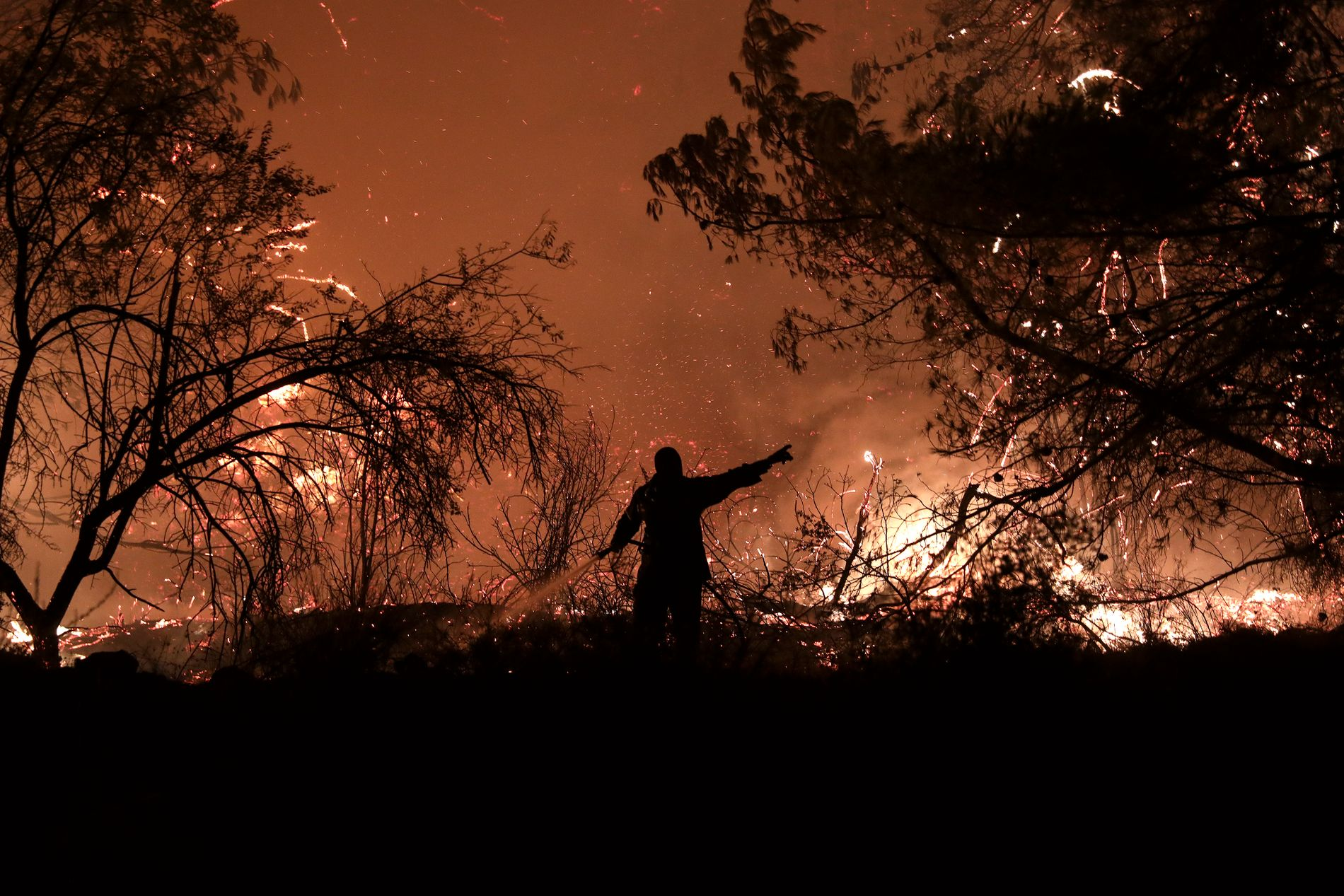 KREVENDE: En brannmann forsøker å få bukt med heten og ilden i skogbrannen i landsbyen Makrimalli på Evia, øya nordøst for Aten.