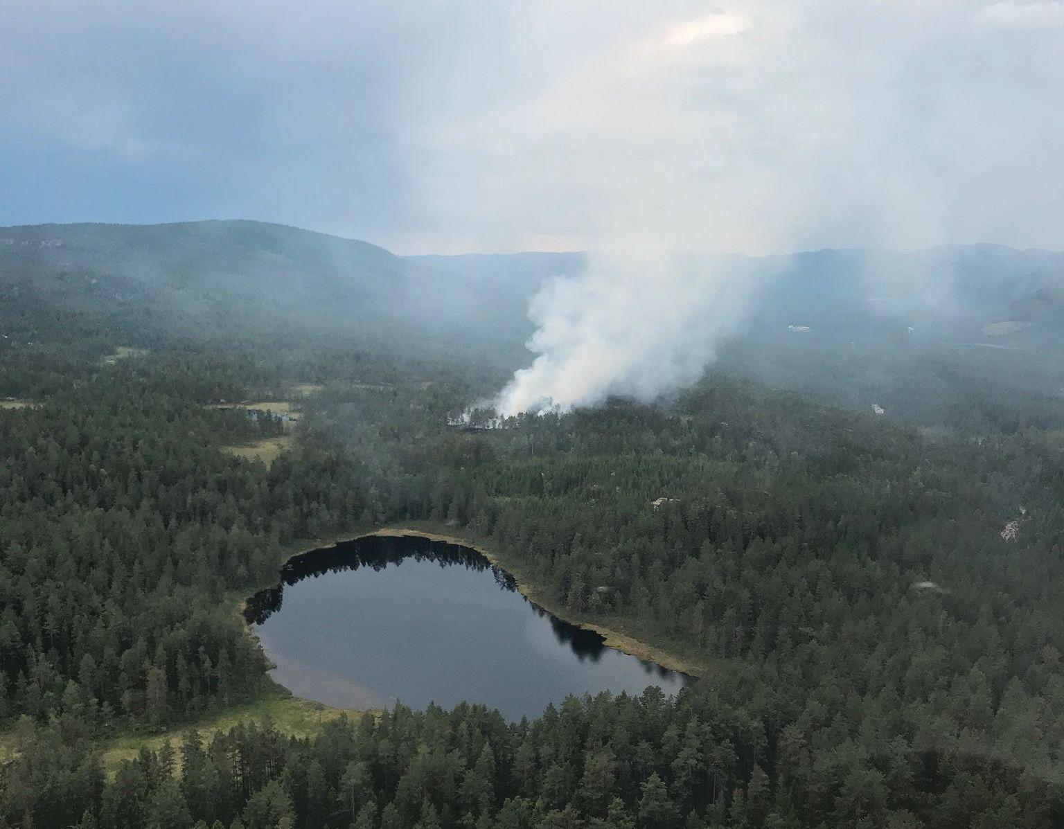 NISSEDAL: Dette bildet er tatt av skogbrannhelikopteret torsdag.