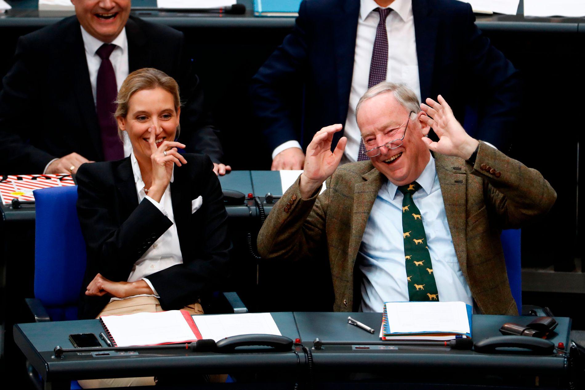GRUNN TIL Å SMILE: Lederne av Alternativ for Tyskland (AfD) Alice Weidel (t.v.) og Alexander Gauland (t.h.) kunne ha ledd hele veien til valgurnene dersom det var valg i dag, etter å ha forbigått sosialdemokratene for aller første gang i en representativ meningsmåling.