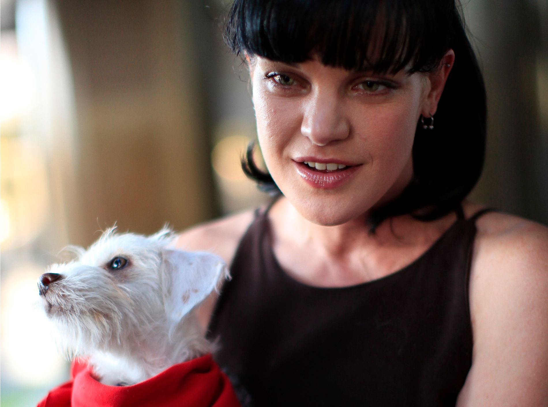 SLUTTET BRÅTT: Pauley Perrette har spilt i TV-serien «NCIS» siden 2003, men i høst offentliggjorde hun at hun slutter i serien.