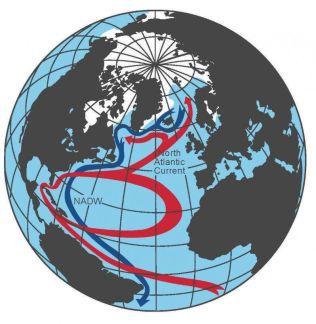 ENORM OG VARM: Golfstrømmen anses som helt vesentlig for klimaet i Nord-Europa. Slik beveger det storstilte strømsystemet seg. Rød pil viser varm overflatestrøm, blå viser kald bunnstrøm.