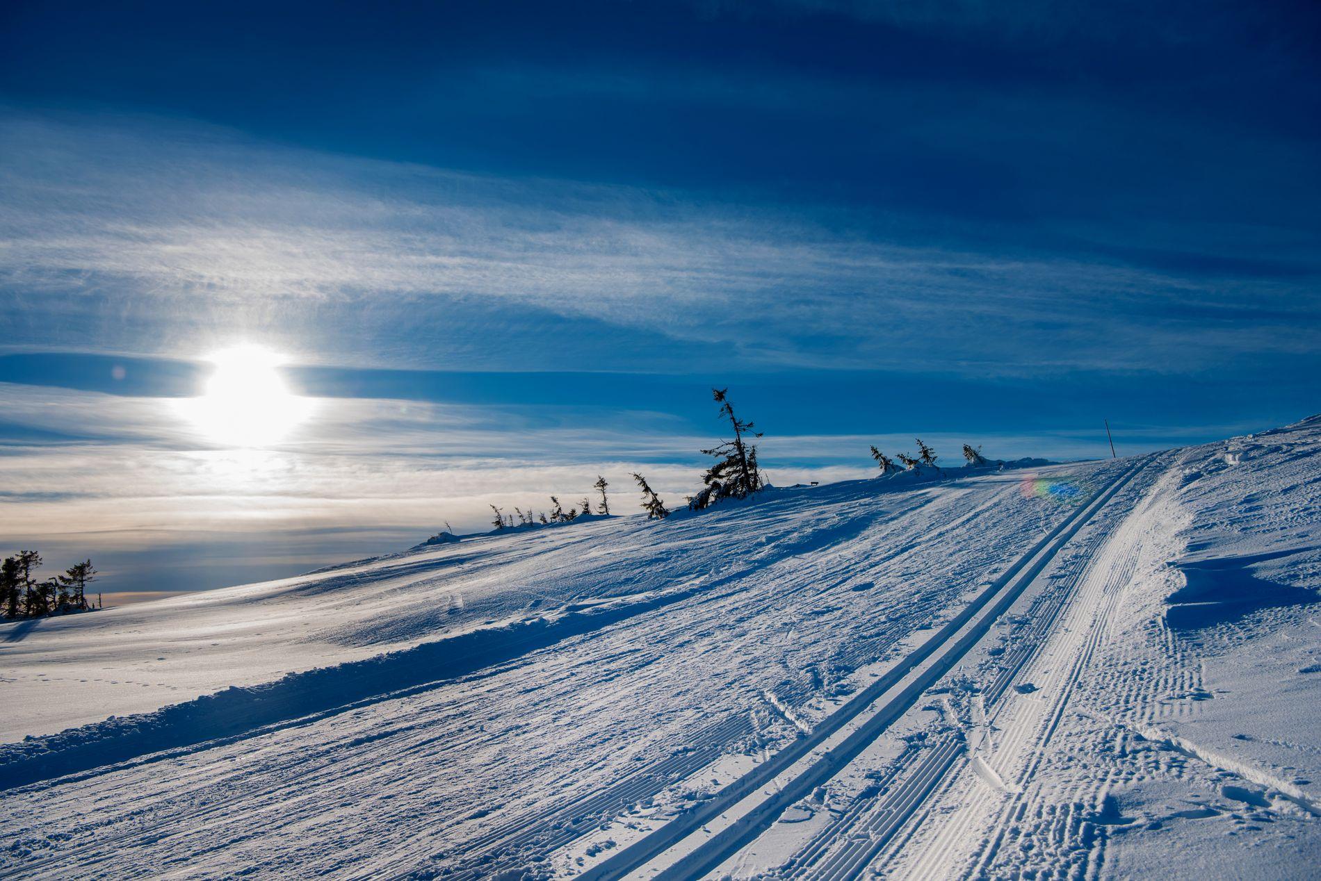 SKIFØRE: Det skal bli skikkelig vintervær til helgen, skal vi tro meteorologene. Dette bildet er av en skiløype opp til Lunkefjell på Sjusjøen ifjor vinter.