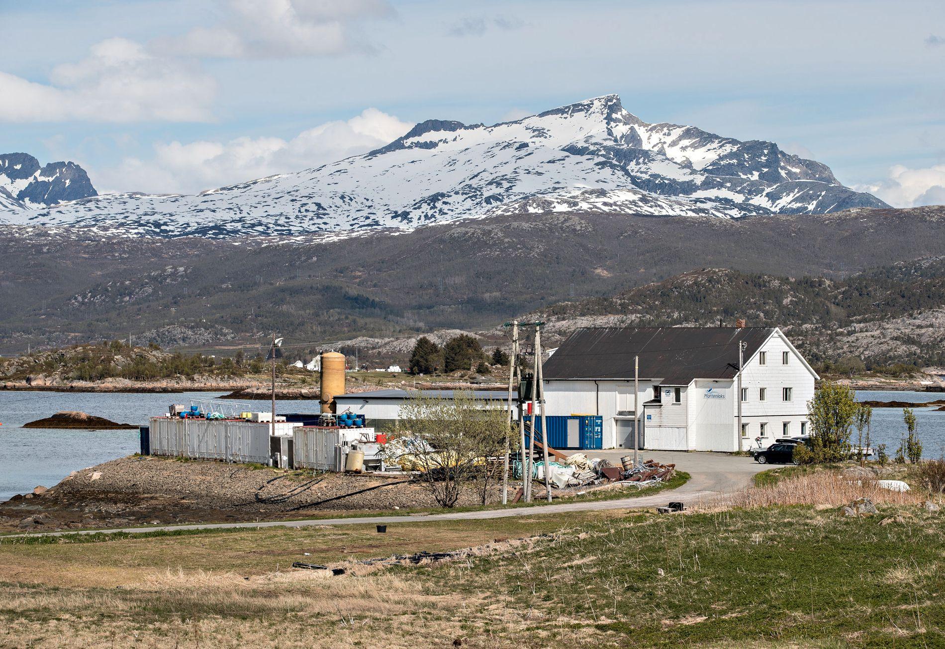 MORTENLAKS: Den vesle oppdretteren Mortenlaks er oppkalt etter sønnen til første eier – og holder til i et gammelt fiskemottak.