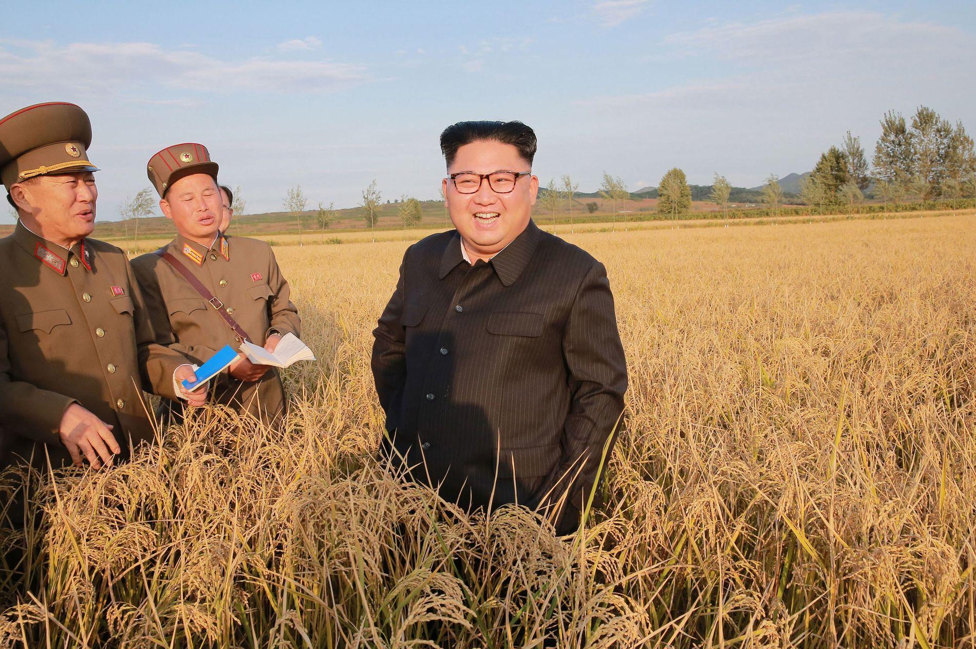 PÅ LANDET: På dette udaterte bildet, som er distribuert av den nord-koreanske regjeringen lørdag, viser Kim Jong-un (midt i bildet) på en bondegård i Nord-Korea.