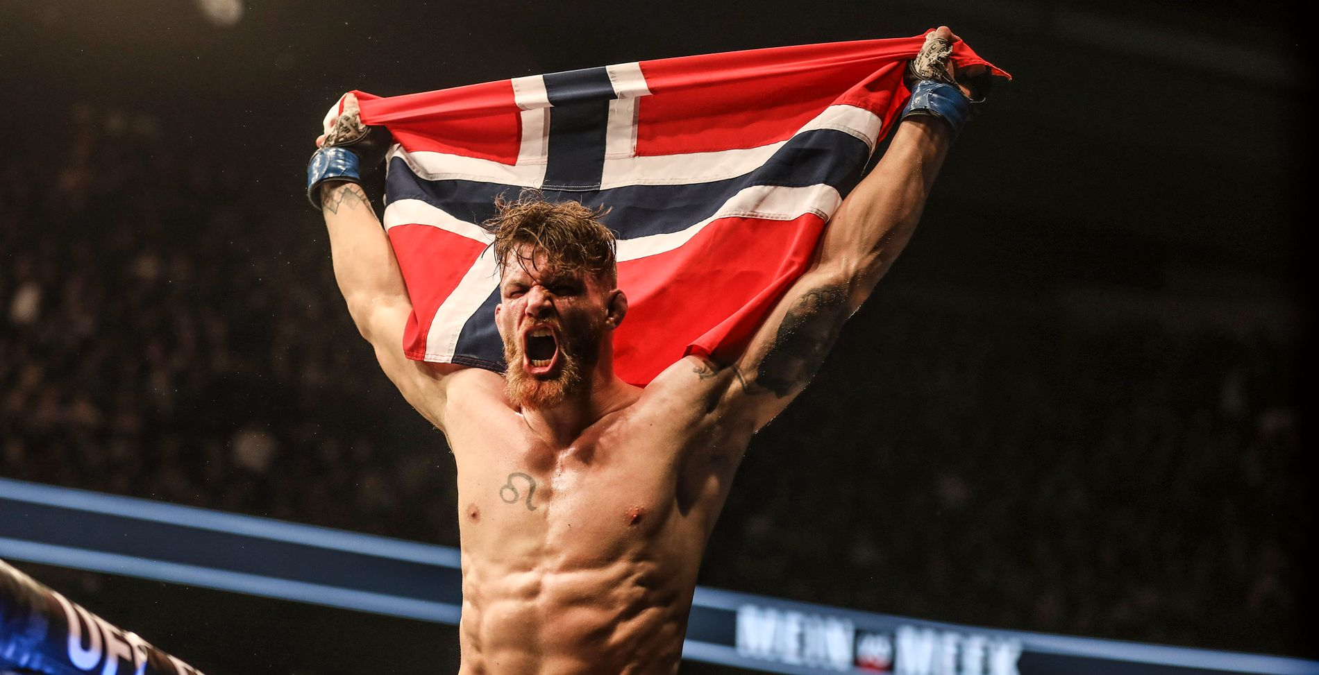 SEIRET: Emil Meek løftet det norske flagget og slapp jubelen løs etter kampen i Air Canada Centre.