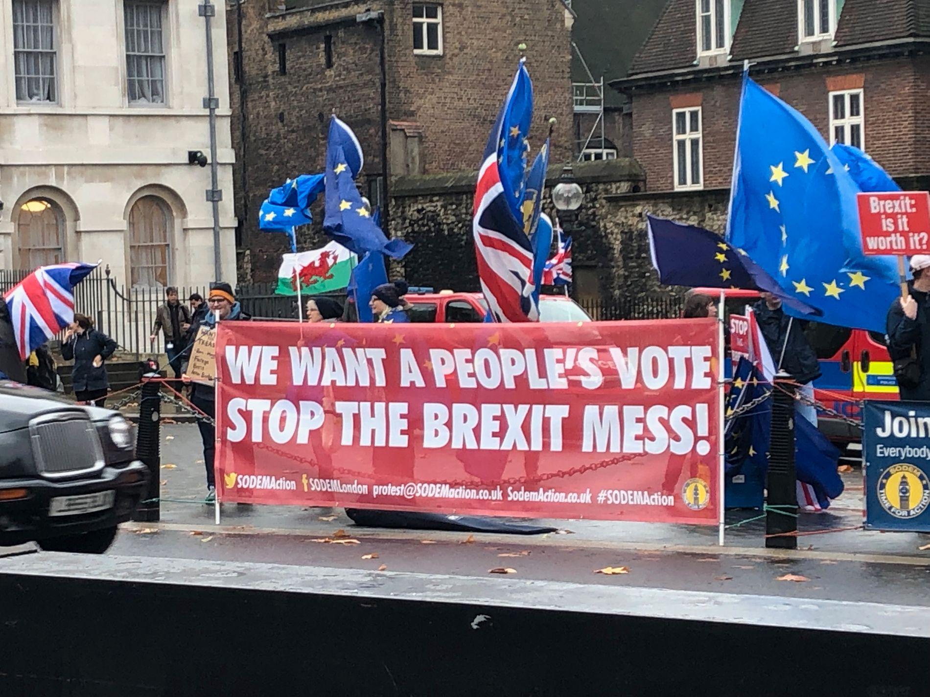 DEMONSTRERER: Hver dag siden brexit-avstemningen i 2016 har disse aktivistene stått utenfor parlamentet i Westminster og krevd en ny folkeavstemning.