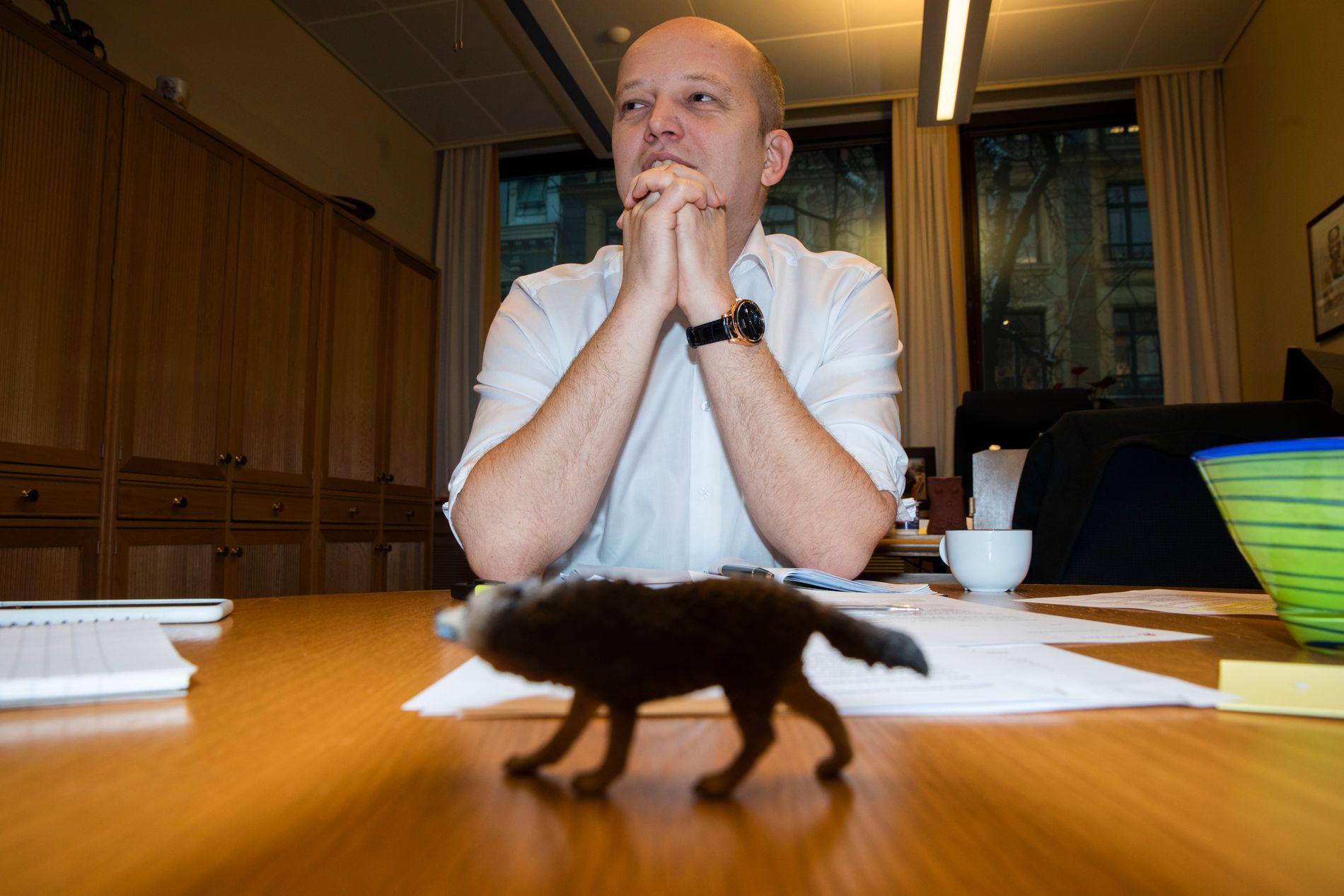 ULVE-MANNEN: Sp-leder Trygve Slagsvold Vedum vil fokusere på ulv helt frem til lokalvalget i september i år.