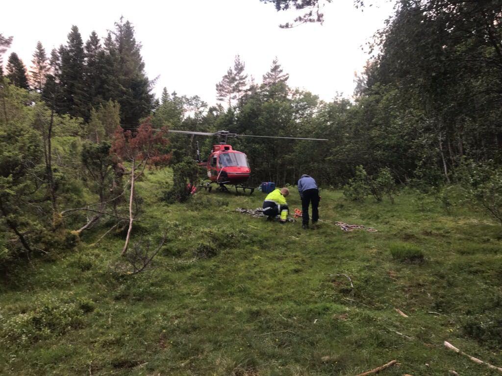 HELIKOPTER: Et kraftig nett ble benyttet til å løfte ponnien opp og fly den ned i dalen.