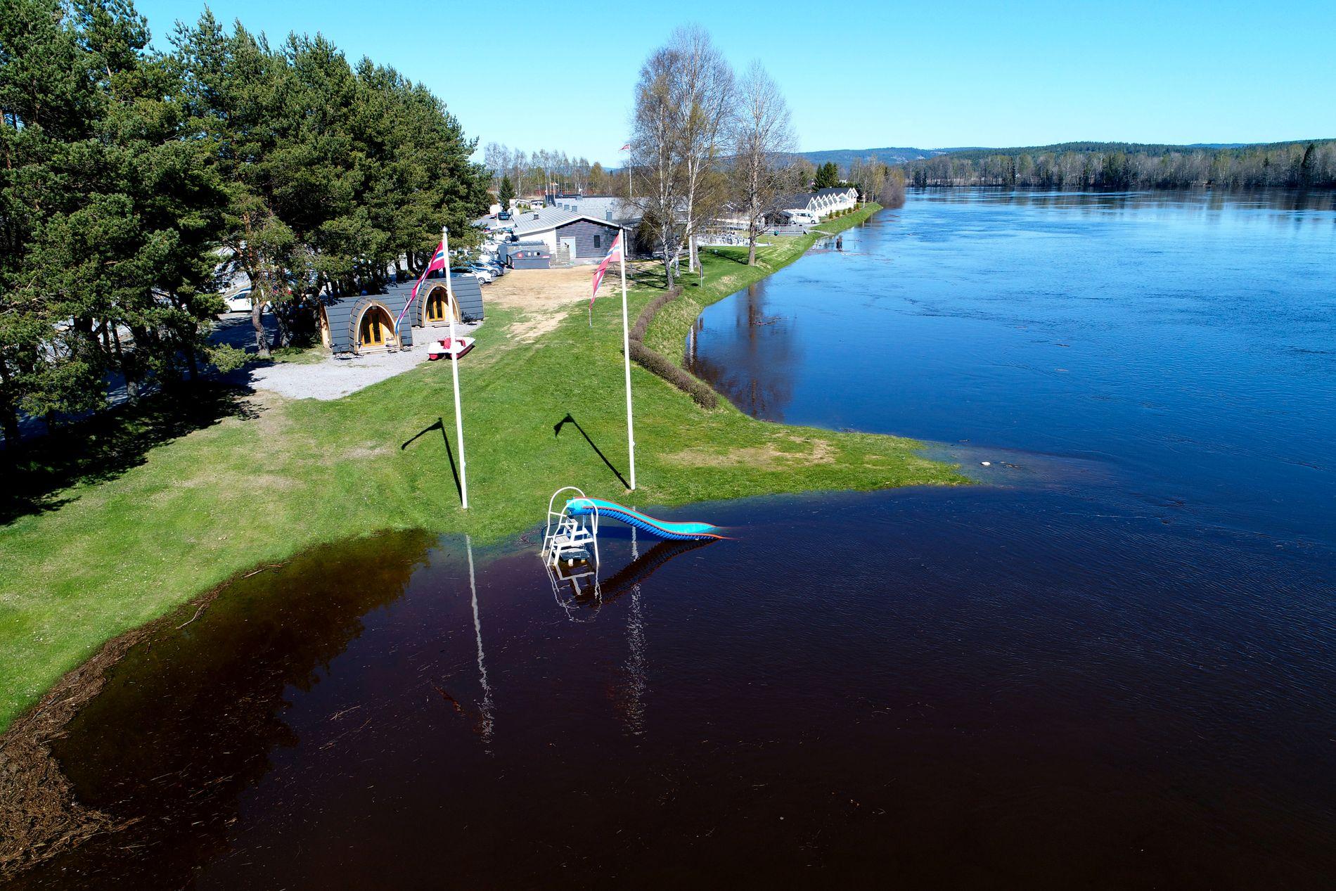 STIGER STADIG: En sklie står under vann ved Sanngrund ved Glomma som følge av flommen.
