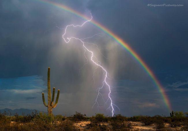 ALT HAN HÅPET PÅ: «I kveld, rett før solnedgang, fikk jeg endelig bildet jeg har forsøkt å få i flere år» skrev Greg McCown på Twitter lørdag. Bildet deles etter tillatelse fra fotografen.