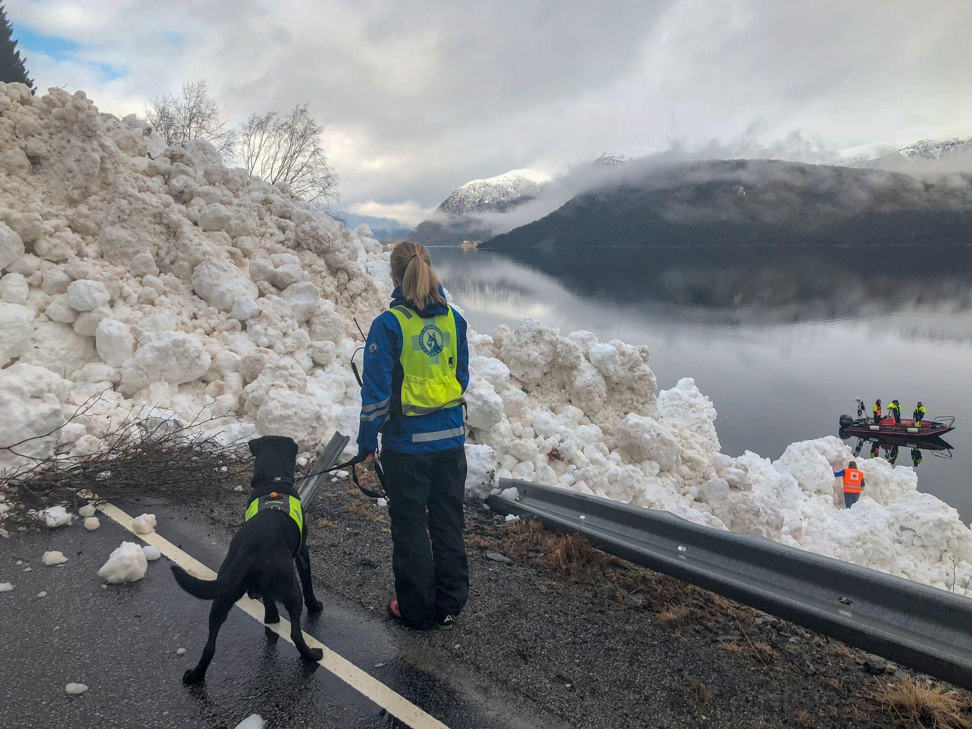 KJEMPESKRED: Et snøskred sperret veien på E39 ved Hornindalsvatnet søndag. Norske Redningshunder var på stedet for å sjekke om det kunne være folk som var tatt av skredet.