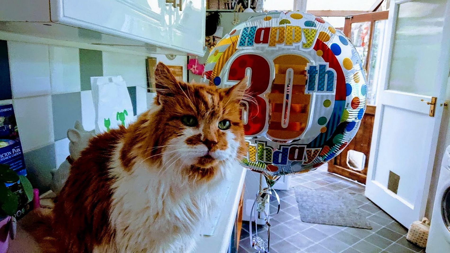 PUS-HER 30: Rubble ble født i 1988 og lever fremdeles livets glade dager. Hurra!