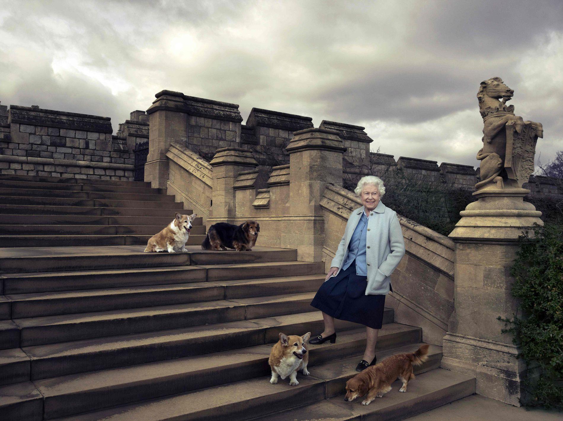 EN EPOKE ER OVER: Søndag døde den aller siste av dronning Elizabeths corgier, Willow, øverst til venstre.  Holly, nederst til venstre ved siden av dronningen døde i 2016. Nå er det bare de to dorgiene Vulcan og Candy igjen av dronningens hunder.