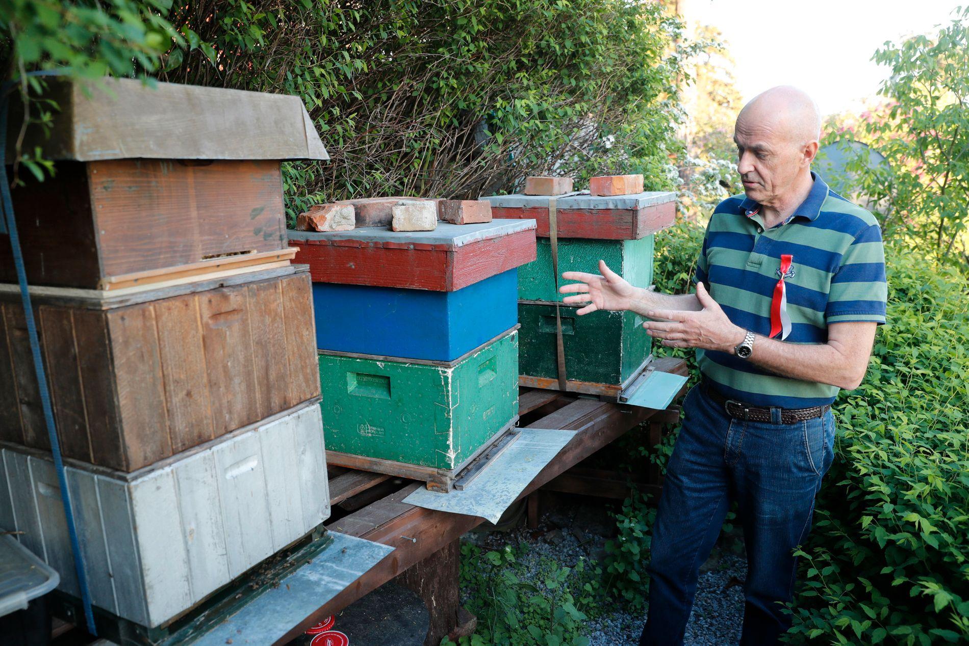 TOMME BIKUBER: Biene stakk fra bikubene på Nordstrand. Eier Trygve Kjelestrup utlover en krukke biodynamisk honning som finnerlønn.