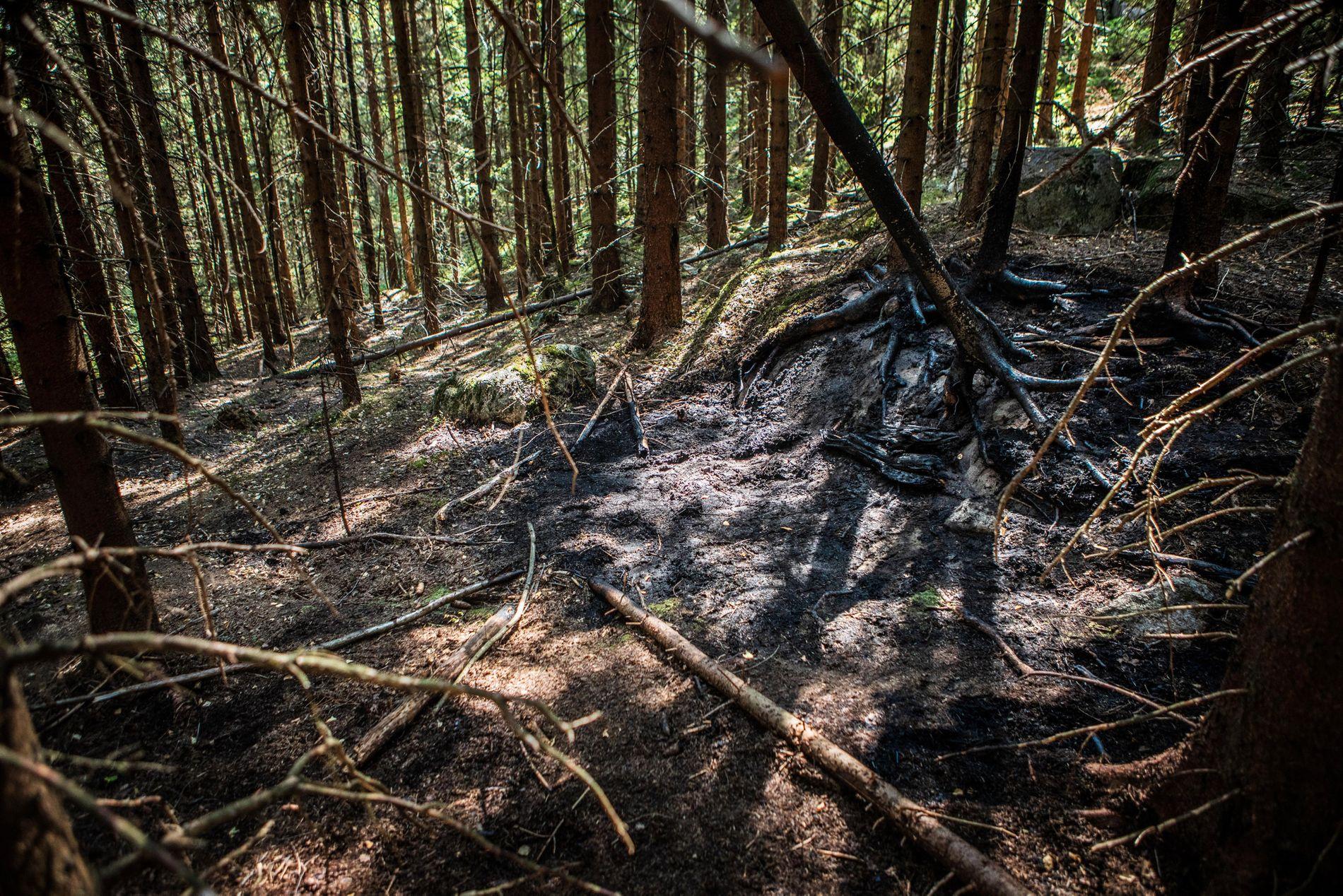 FUNNSTED: Politiet opplyser at det fremdeles var flammer da de kom frem til funnstedet i Maridalen i Oslo onsdag.