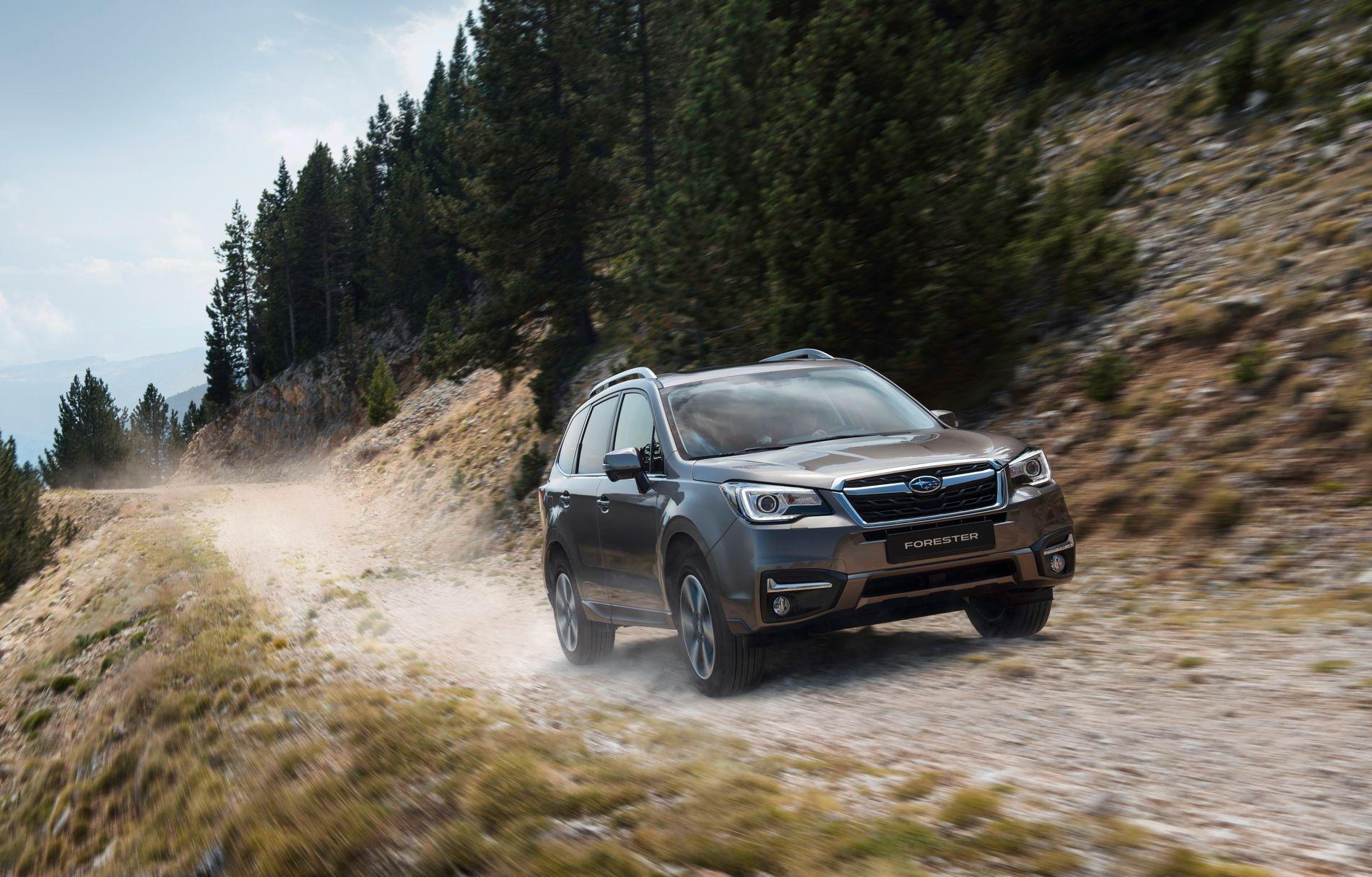 UNNGIKK ELGEN: Dette er nye Subaru Forester. Modellen har EyeSight førerassistansesystem som sørget for at familien Østgård ikke fikk en elg i frontruten.