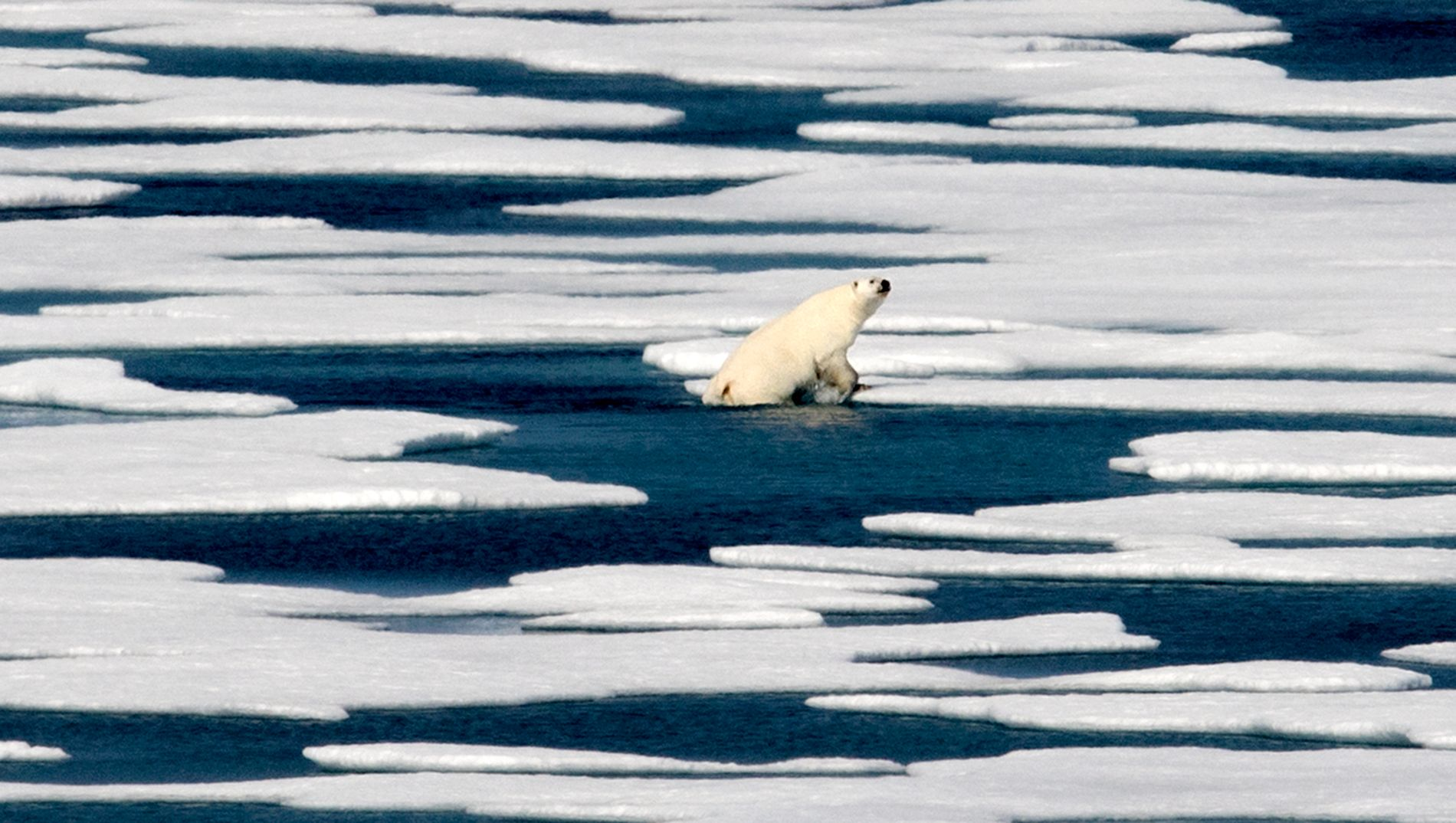 SMELTER: Smelting av Arktis gir mildere somrer i Norge.