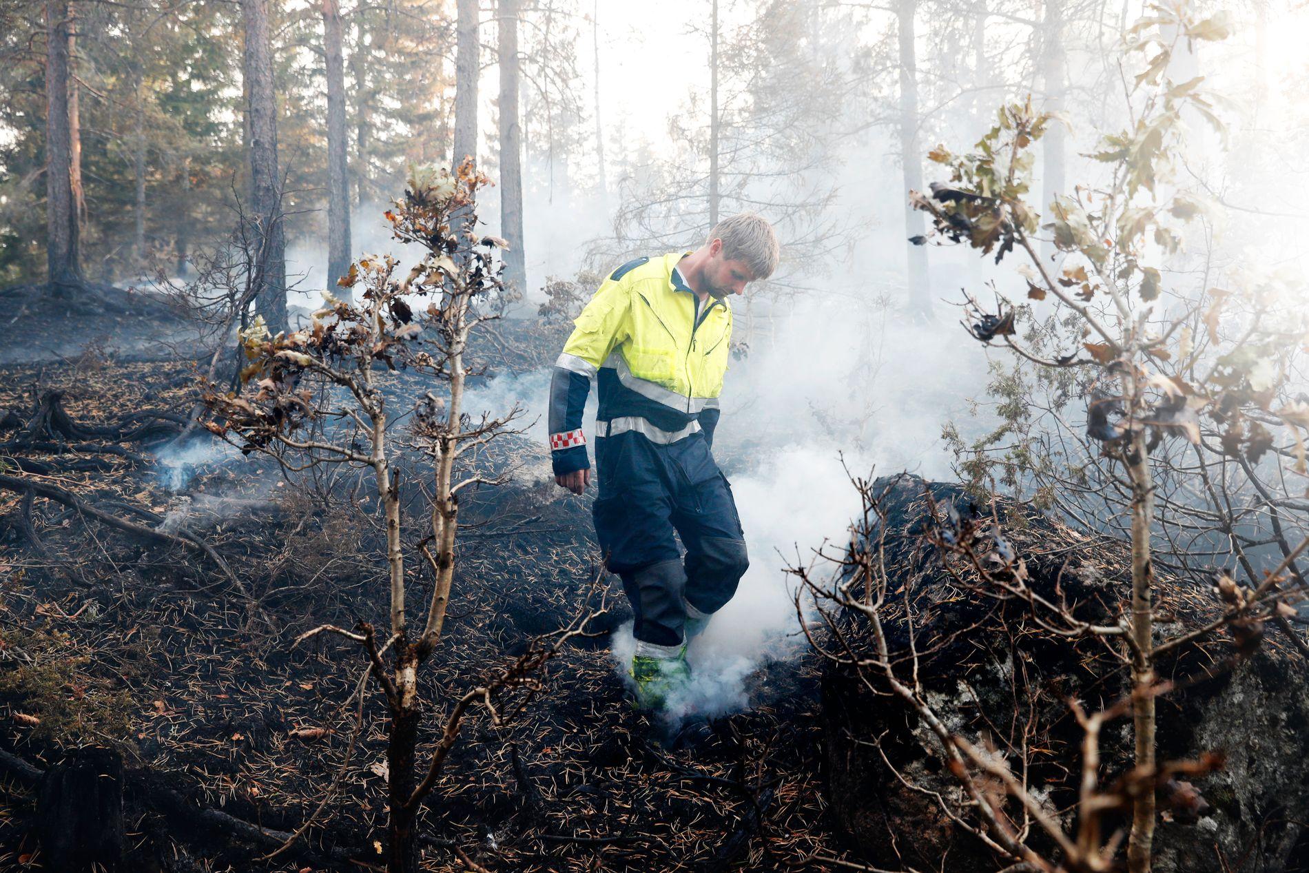 LITT KONTROLL: Lørdag kveld begynte brannvesenet å få kontroll over brannen ved Vegårshei. «Hvis ikke det blir sterkere vind, har vi kontroll på det. Men en kan aldri være helt sikker, før det er ferdig slukket», sier brannmester Knut Erik Ulltveit.
