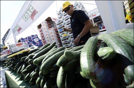 FIKK SKYLDA: Spanske agurker fikk skylda for e.coli-utbruddet. Spania har varslet erstatningskrav for tapet, og her deler bønder agurker ut i en kampanje i Madrid. Foto: Afp
