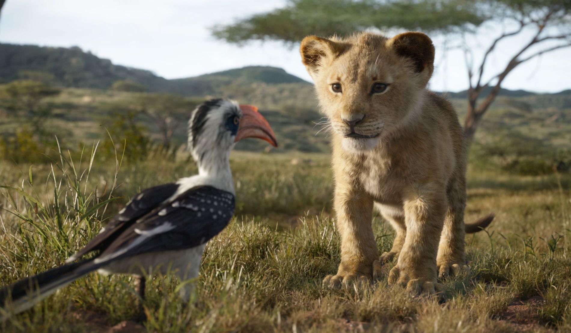 «SKJER 'A, PÅSAN?»: Simba og Zazu (til venstre) i «Løvenes konge».
