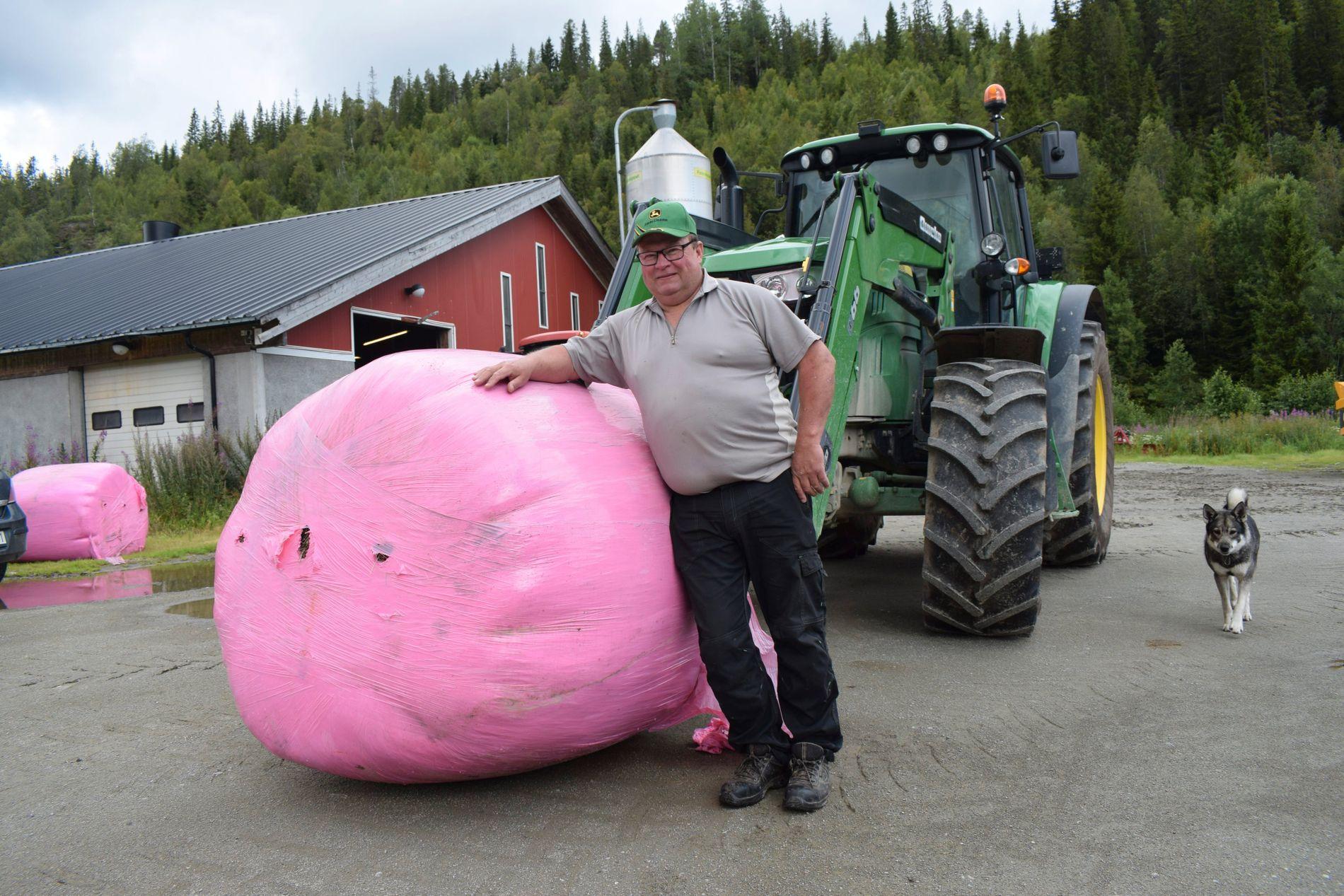 RULLER ROSA BALLER: Stein Olav Oksvold er en av mange norske bønder som bidrar til kreftforskning i år.