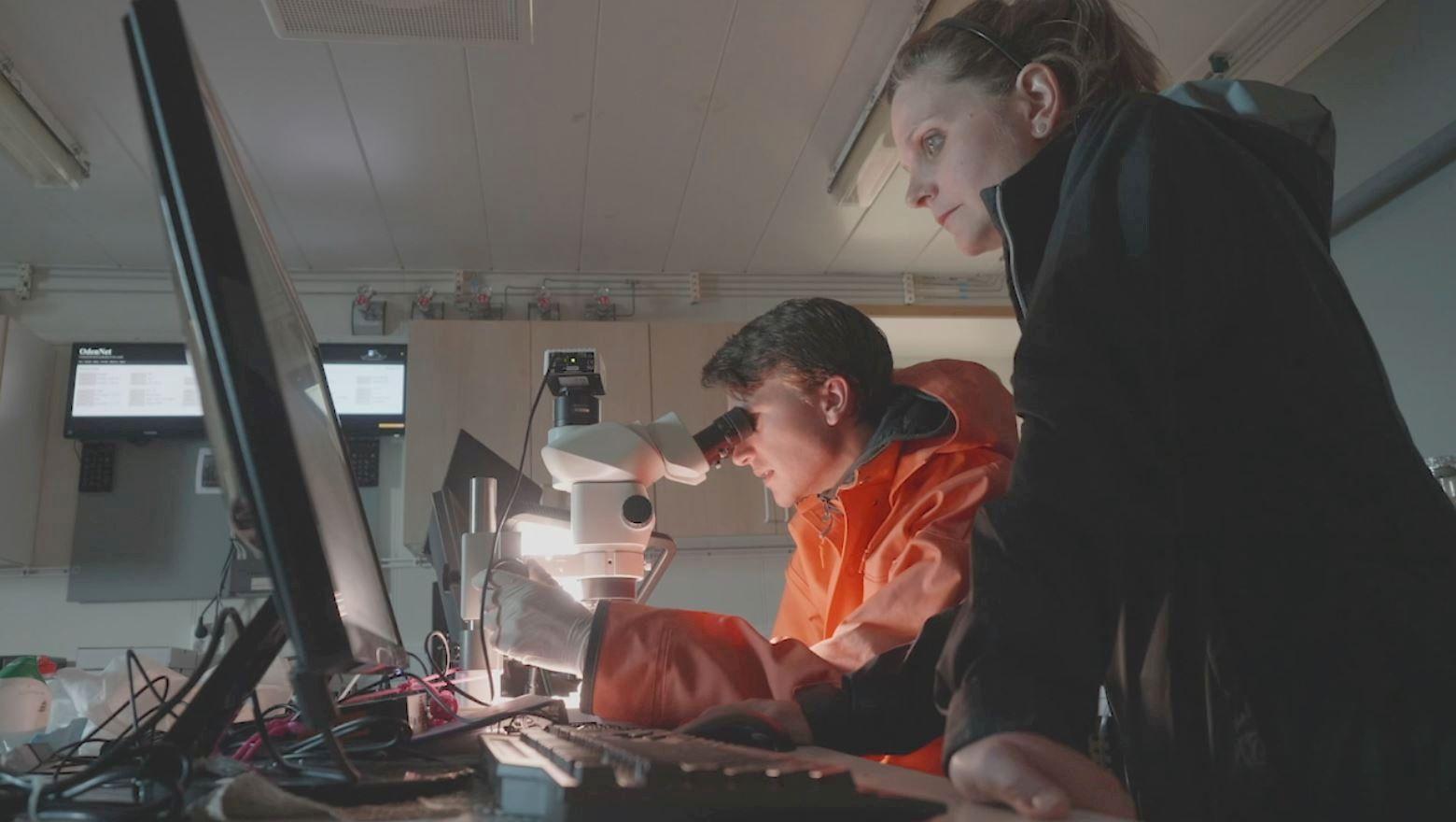 INSPISERER FUNNENE: Forskere gjennomførte over 18 dager i juli og august en ekspedisjon i Arktis.